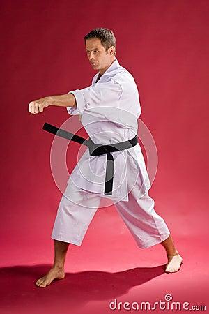 Free Karate Man With Black Belt Royalty Free Stock Photos - 5919828
