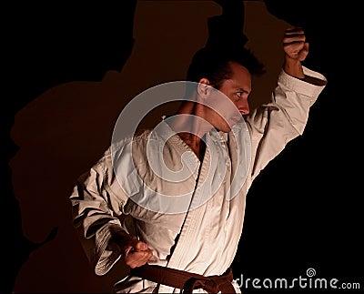 Karate/Shadow Partner