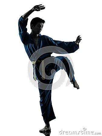 Karate vietvodao martial arts man silhouette