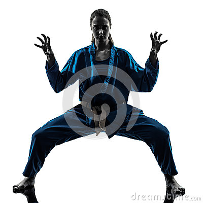 Karate vietvodao martial arts woman silhouette