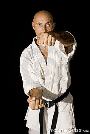Free Karateka Men Fighting Stock Photography - 10737252