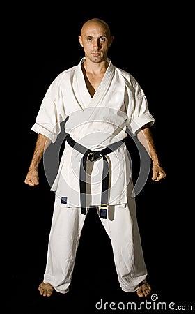 Free Karateka Men Fighting Stock Photography - 10737262