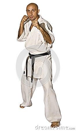 Free Karateka Men Fighting Stock Photos - 7360213