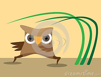 Karateka owl perform sport exercises