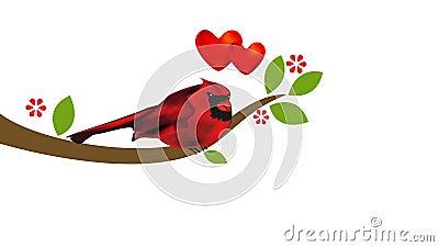 Kardinal på träd Gem för video för längd i fot räknat för begrepp för förälskelsehjärtavalentin stock illustrationer