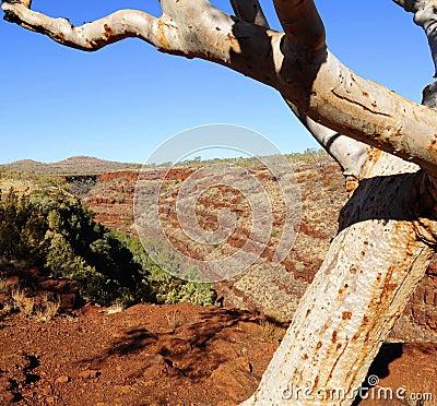 Karijini NP Pilbara Western Australia