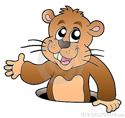 Karikatur groundhog, das vom Loch lauert