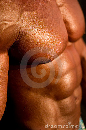 Karosserie des Bodybuilders
