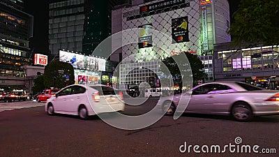 Karts Driving On Night Street Tokyo Japan