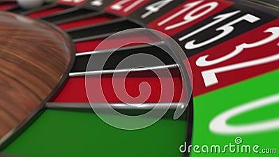 Kasynowa ruletowego koła piłka uderza 17 siedemnaście czerń zdjęcie wideo