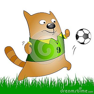 Kat met voetbalbal