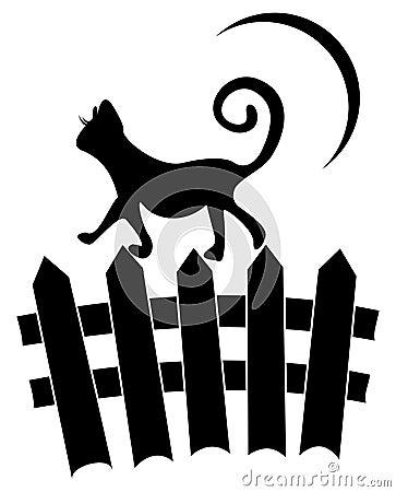 Kat op omheining