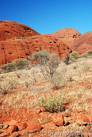 Kata Tjuta (The Olgas) - Fragment Editorial Image