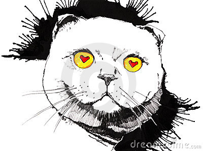 Katten eyes smaklig mus s