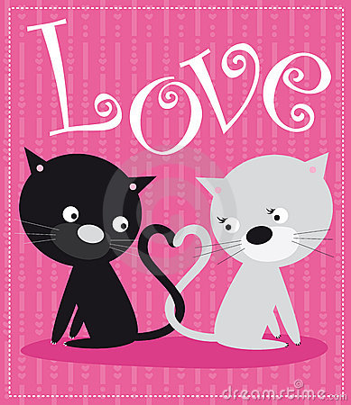 Katten in liefde