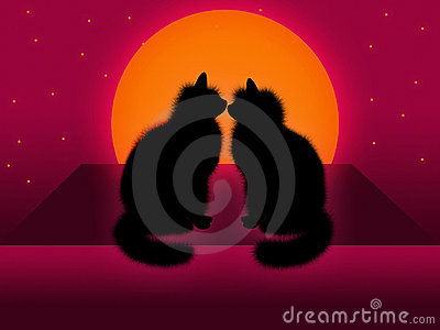 Kattpar