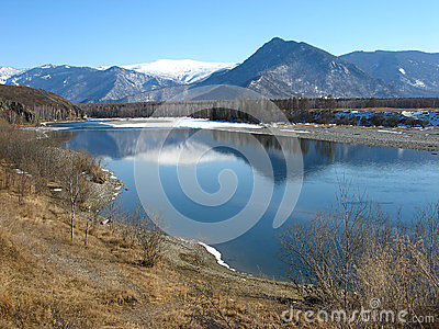 Katun River in the valley Uimon. Gorny Altai