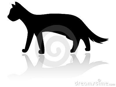 Katzeschattenbild