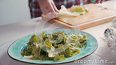 Kauwsla, bladeren in het bord Vrouw die gezonde voedingssalade bereidt stock footage
