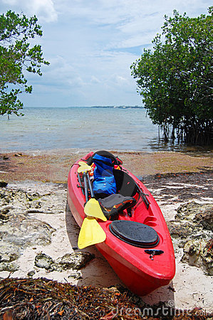 Kayak expedition
