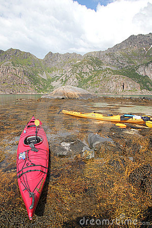 Kayaking in Lofoten