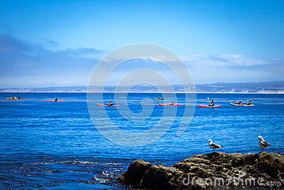 Kayaking in Monterey Bay Editorial Stock Photo