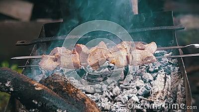 Kebab Shish сварено на гриле в замедленном движении леса видеоматериал
