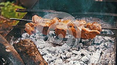 Kebab Shish сварено на гриле в лесе сток-видео