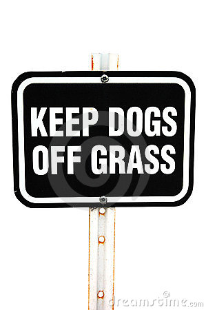 Keep dogs of grass