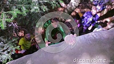 Kei die in het hout beklimmen de klimmer op een kei proberen te beklimmen en de vrienden die verzekeren de bodem stock video