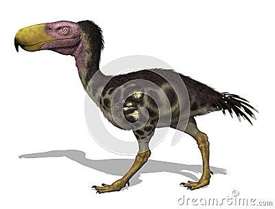 Kelenken -  Prehistoric  Terror Bird