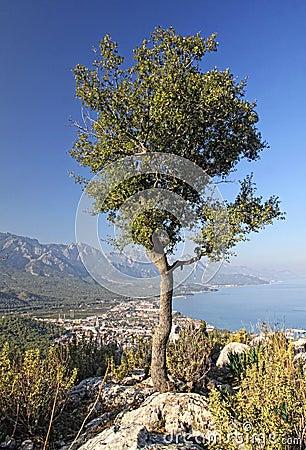 Kemer city, Antalya province, Turkey