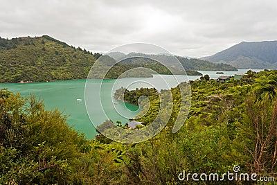 Kenepuru Sound of Marlborough Sounds, New Zealand