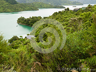 Kenepuru Sound of Marlborough Sounds, New Zealand