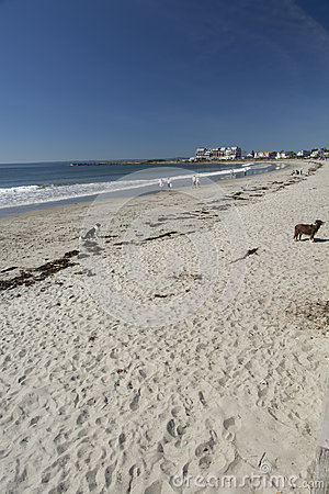 Free Kennebunk Beach Stock Photo - 58326500
