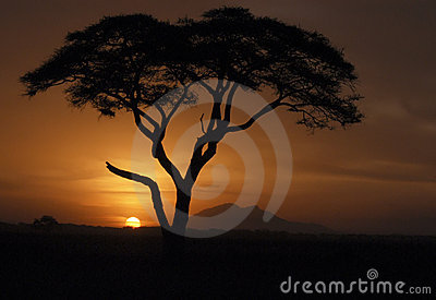 Kenya Sunset, Africa