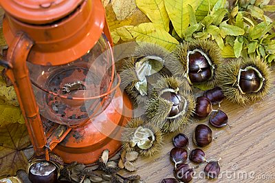 Kerosen lamp still life with Spanish Chestnuts