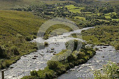 Kerry (Ireland)