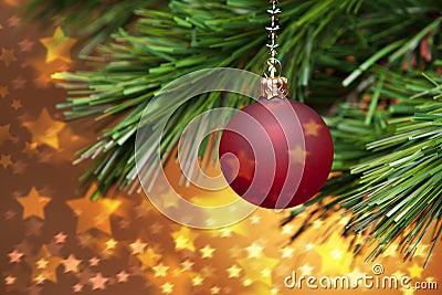 Kerstboom en Gouden Sterren