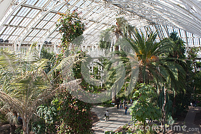 Kew Garden Temperate House Editorial Photo