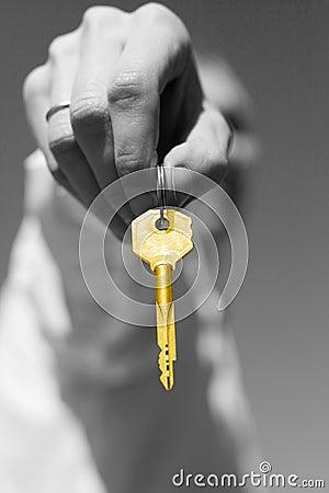 Free Key Royalty Free Stock Photography - 10352127