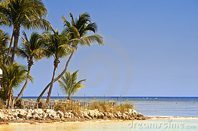 Key West Beach Scene