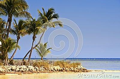 Key West Beach Scene