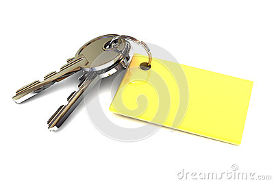 Keys with Blank Gold Keyring