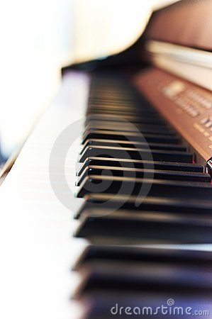 Keys of piano closeup
