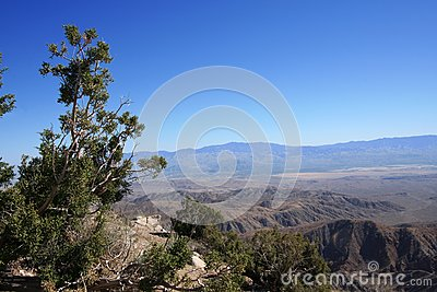 Keys View at Joshua Tree