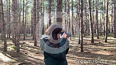 KHERSON OBLAST, UKRAINA - 18 mars 2020: En tjej med kamera tar bilder i en tallskog Walk i skogen Resor och h lager videofilmer