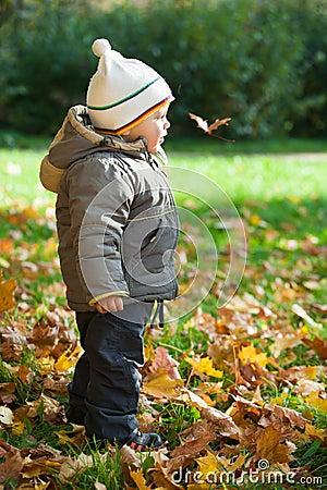 Kid in autumn wood