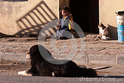 Kid, Cat and Dog Editorial Image