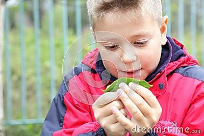 Kid examining leaf